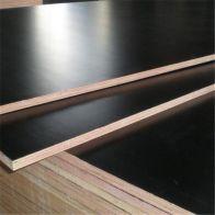 Plywood Fenólico Comasa 18mm 4x8 OTP