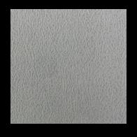 Cielo Raso de Yeso 2'x2'x7mm (103)